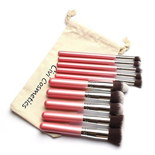 TOOGOO(R)10 pcs doux cheveux synthetiques Kit de Outils de maquillage cosmetiques Beaute Ensembles de Brosses de Maquillage avec Sac de cordon-poignee rose Tube d'argent