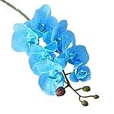 Calcifer® 10PCS Künstliche echtes Touch Latex Phalaenopsis-Orchidee Vorbau Blumensträuße Künstliche Blumen für Hochzeit Party Home Garten Dekoration blau