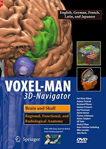 voxel-man-3d-navigator-brain-and-skull-regional-functional-and-radiological-anatomy