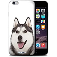 coque iphone 8 husky