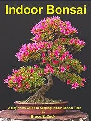 Indoor Bonsai (English Edition)