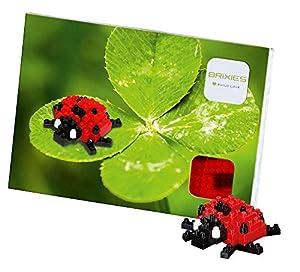 Brixies- Postal Mariquita, (Schäfer Toy Company GmbH BX220.019)