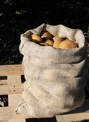 Agralan Heavy Duty Grande de Toile de Jute de 25 kg à Base de Pommes de Terre Sac de Stockage – Bon Nombre de Lot Pack of 3
