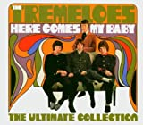 Songtexte von The Tremeloes - Here Comes My Baby: The Ultimate Collection