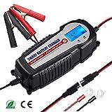 Batterie Ladegerät 12V/24V 10A Winterlademodus,Aktualisierte Version LCD-Batteriespannungs- und Ladefortschrittsanzeige für KFZ PKW Auto Motorrad