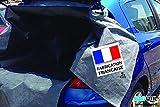 BAGUTIL Easy Protect Car - Bâche de Protection Coffre et habitacle Voiture citadine - Largeur 100 cm x Hauteur 85 cm x Profondeur 130 cm par So Bag France