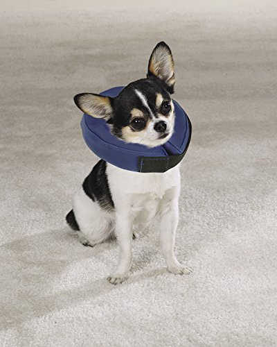 Total Pet Health Inflatable Dog Collars - Veterinarian-Approved Collars Designed to Prevent Pets from Scratching and… 2