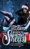 Holidays Between the Sheets: A Reverse Harem Anthology of Festive Scenes that Get to the Point (English Edition)