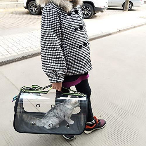 GBX Travelling Pet Band Transparente Katzentasche Puppy Cat Pet Bag Klappbarer Rucksack Panoramaschulter Tragbare Diagonale Dog Out Bag -