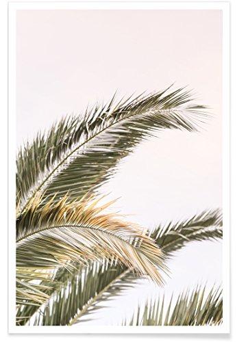 Oasis Palm-design (JUNIQE® Poster 20x30cm Palmen - Design