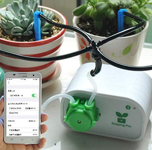 Controllo del telefono cellulare dispositivo di innaffiatura automatica del giardino intelligente, impianto per piante grasse sistema di irrigazione a goccia per utensili con pompa dell'acqua