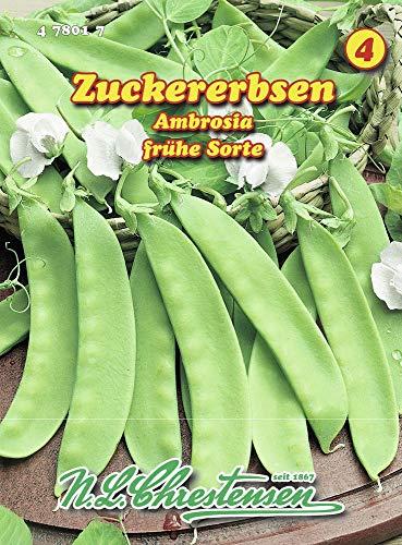 N.L. Chrestensen 478017-B Zuckererbse Ambrosia (Zuckererbsensamen)