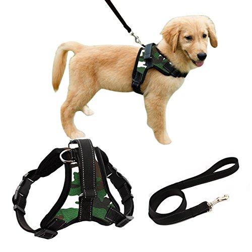 Liying gepolstertes, verstellbares Hundegeschirr mit schwarzer Leine, 120 cm, reflektierendes Sicherheitsgeschirr, robuster Brust- / Rückengurt mit Griffen für kleine, mittelgroße und große Hunde -