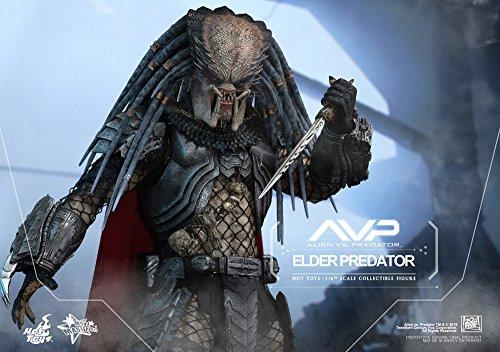 Hot Toys ht9025671: 6Escala Elder Predator Figura 5