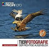 Tierfotografie: Der richtige Augenblick (mitp Edition ProfiFoto)