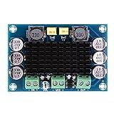 DC 12V-24V TPA3116 D2 100W Mono Kanal Digital Audio Endstufe Board für Auto