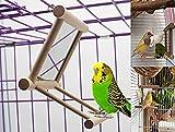 Ayuboom - Espejo para pájaros y pájaros con espejo, juguete para loro, soporte para pájaros con espejo, juguete para pájaros, juguete para colgar con espejo para macaw africano gris parakeet Cockatoo Cockatiel Conure Lovebirds Canaries