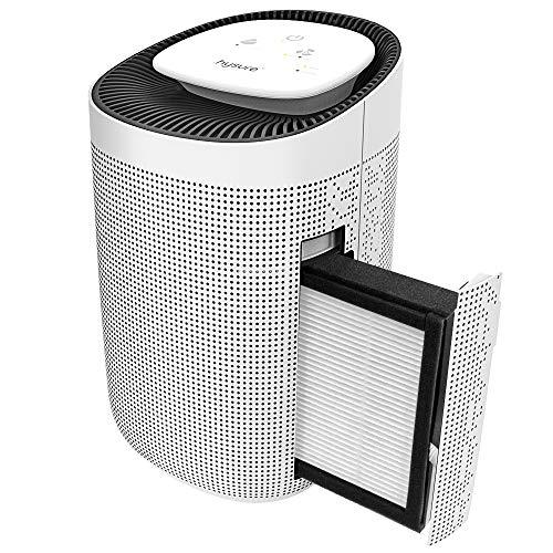 Luftentfeuchter Filter (Hysure® 2-in-1 Luftentfeuchter Luftreiniger entfernt 700 ml/Tag, Wassertank 1000 ml, HEPA-Filter, tragbarer Luftreiniger und elektrischer Feuchtigkeitsspender für Haus)