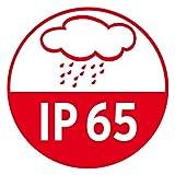 Brennenstuhl Projektor LED Chip anzubringen IP65, 50 W