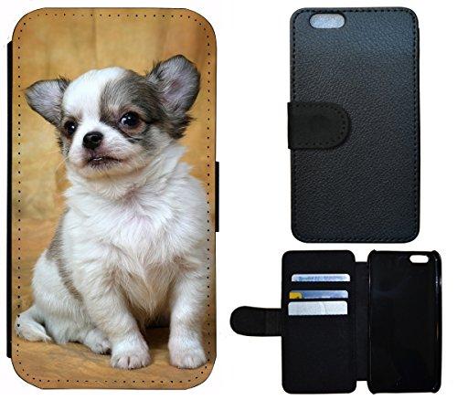Flip Cover Schutz Hülle Handy Tasche Etui Case für (Apple iPhone 5 / 5s, 1361 Totenkopf Skull Abstract in Flammen) 1363 Welpe Chihuahua Tier süßer Hund Hundebaby
