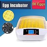 Iglobalbuy Couveuse Automatique 56 œufs, Incubateur avec L'affichage Digital L'alarme de Température et L'humidité pour L'éclosion des œufs des Poulets Canards Volailles Cailles Pigeons Oiseaux
