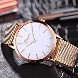Uhren Damen Armbanduhr Edelstahl Uhren Frauen Casual Quarz Silikonband Armbanduhr Analoge Armbanduhr Mode Schön Wrist Uhr,ABsoar