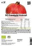 BIO Granatapfel Muttersaft – 100% Direktsaft (3 Liter) - 2