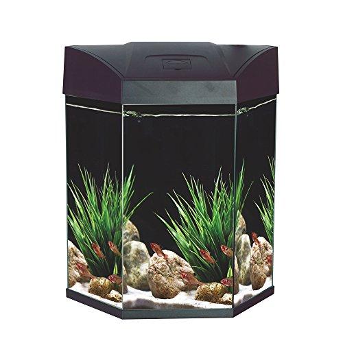 Aquarium Sechseck (AA-Sechseck-Komplett-Aquarium 70 L EC Hexa mit LED-Beleuchtung, Filter u. Pumpe, schwarz)