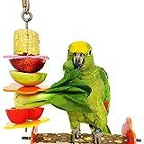 Bwogue Vogel Spieß, Vogel & kleine Tiere Edelstahl Obst Gemüse Halter für Käfige, groß