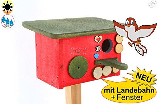 PREMIUM-XL Nistkasten BAYERN-DESIGN, Einflugloch ca. 33-35 mm für Rotschwänzchen, Kleiber, Spatzen NEU MIT ANFLUG + BEOBACHTUNG + Überwinterungsplatz Vogelhaus, ROT LASIERT MIT LANDEBAHN und klappbarem Dach zur Reinigung in grün, ca. 28 x 18 x 18 cm, + MIT FENSTER-Plexiglas XXL-Guckloch 50 mm , Ergänzung zu BTV Tränke, Futterstation Eichhörnchen, Insektenhotel, Beobachtung mit schwenkbarem Deckel zum Nachfüllen + -Dach Holz mit Dach ROT dunkelrot GRÜN moosgrün MASSIV