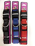 Hundehalsband aus Nylon verstellbar für Hunde Mittelgroß bis Groß