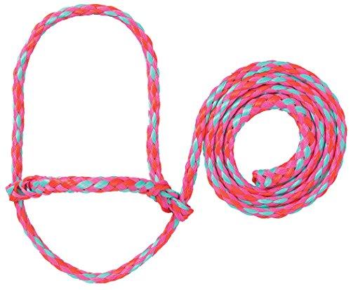 Weaver Leder Vieh Poly Seil Schaf Halfter, Hot Pink/Coral/Mint