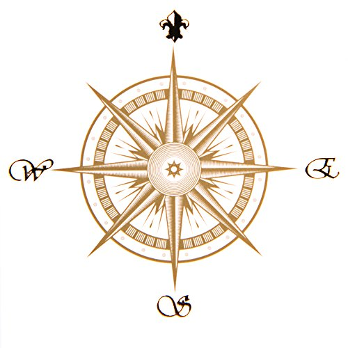 compass your life **Xmas Aktion** 100ml Lifting Control Serum - Bi-molekulare Hyaluronsäure + Aminosäure, Feuchtigkeit - Spannkraft & Elastitzität, gegen Rötungen - HOCHDOSIERT - 3