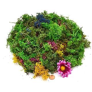 Muwse Island-moos W 100g buntes Märchen-Wald Sortiment Hand-gerupft, präpariert, gefärbt, weich, leicht, lichtecht, haltbar. Deko-moos Floristik-moos Bastel-moos Dekomaterial Zubehör
