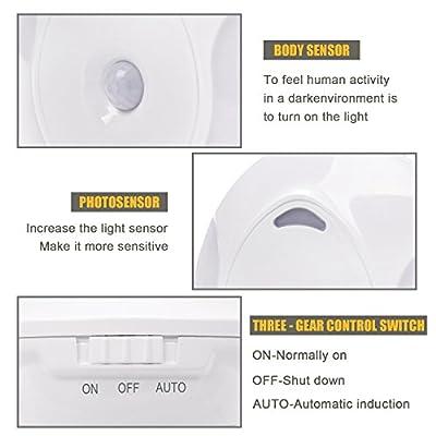 LED Nachtlicht Steckdose mit Bewegungsmelder und Dämmerungssensor Energiesparend Steckdosenlicht PIR Sensorleuchte für Kinderzimmer Schlafzimmer Flur Treppe Warmweiß