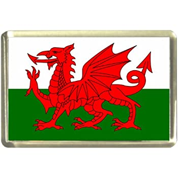 I Love Wales Welsh Icons Fridge Magnet Souvenir Gift Red Dragon Flag Collage