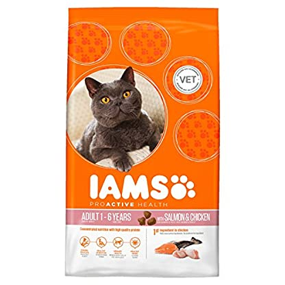 Iams Adult Dry Cat Food Salmon and Chicken, 800g[Old Model] 1