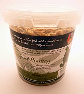 Natures Grub Insects 200g
