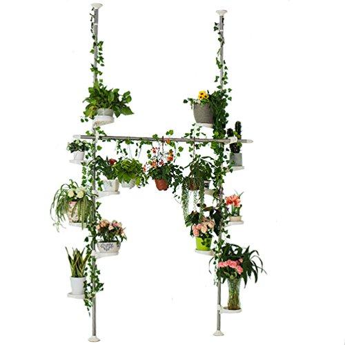 BAOYOUNI Innen Blumentreppe Teleskop Pflanzenständer Doppelte Spannung Pole Metall Blumen Display Rack Platz Sparen Floral Topf Ablage Regal Blumenregal mit 12 Schalen für Kleider Trocknung Aufhänger