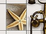 creatisto Fliesen-Folie | Dekor-Sticker Aufkleber Folie Küchenfolie Bad-Fliesen Wand Deko | 15x20 cm Design Motiv Starfish - 1 Stück