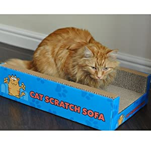 Cat Scratch Sofa Lounge Cardboard Cat-Nip Refil