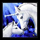 Lisa Parker Fantasy Alto Brillo Cuadro con Unicornios - Sacred Love Impresión Artística con Resin Sellado - 25x25 cm, Motivo
