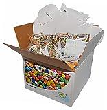 PlayMais 160497 - PlayMais Classic Partybox mit 1500 Teilen und viel Zubehör