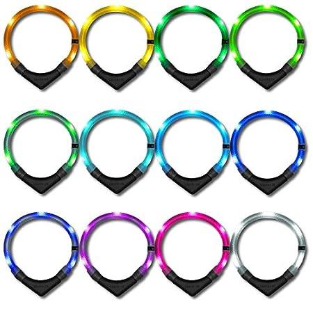 LEUCHTIE® Leuchthalsband Premium Easy Charge I LED Halsband für Hunde I USB aufladbar I konstante Leuchtkraft I…