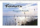 Fehmarn - Bewegende Momente (Wandkalender 2018 DIN A3 quer): Erleben Sie die wunderschöne Sonneninsel Fehmarn im Wechsel der Jahreszeiten - ... ... [Kalender] [Apr 11, 2017] Giesecke, Petra