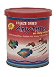Best Tim - ANYTIME blood worms food 10 gm Review