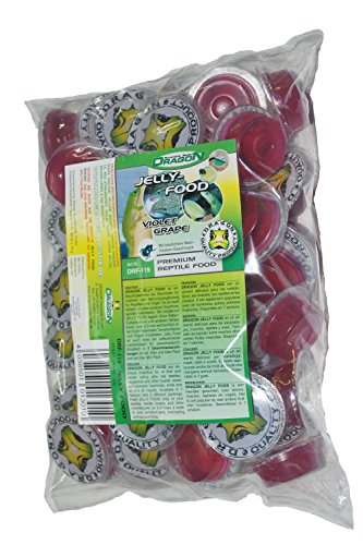 Dragon - Jelly Food 50 a16g Stk. - Violet Grape -