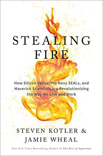 stealing-fire-how-silicon-valley-the-navy-seals-and-maverick-scientists-are-revolutionizing-the-way-