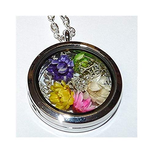 Collar con camafeo seco flores colgante que se abre Natural Liquen musgo Immortals flores