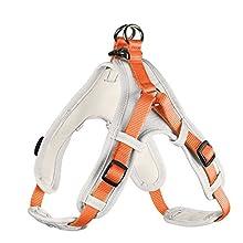 HUNTER Vario Quick - Imbracatura in Neoprene, XL, 79-100 cm, 25 mm, Colore: Arancione/Crema